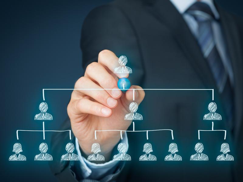 Organigramme de direction d'entreprise