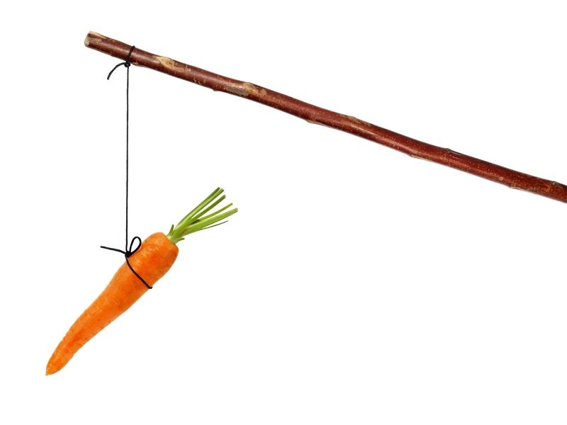Une carrotte attachée à un bâton